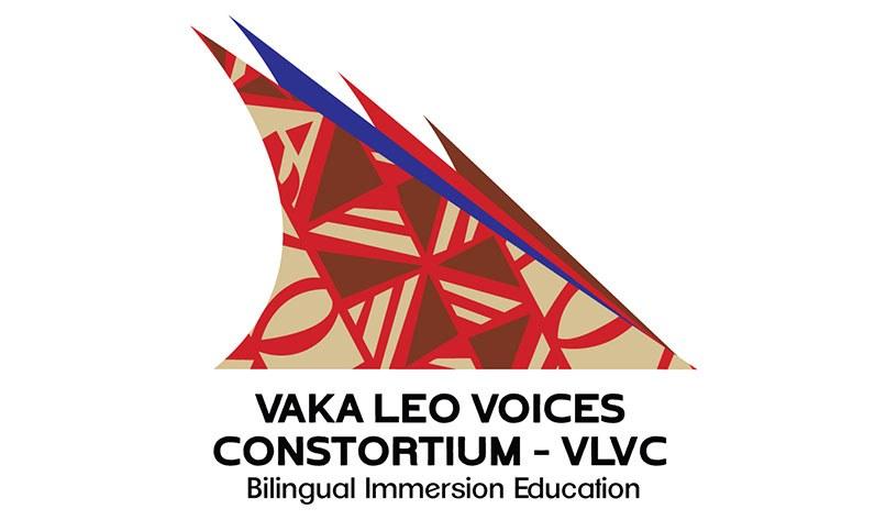 Vlv Logo Image